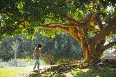 15 sfaturi cum să înțelegi ce îți dorești cu adevărat