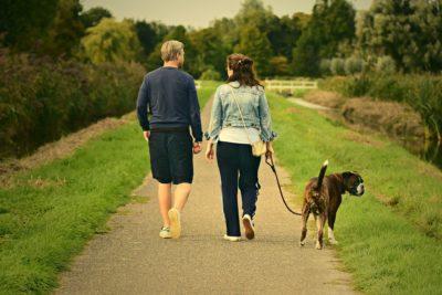 Steve Jobs știa despre beneficiile plimbărilor zilnice, dar tu?
