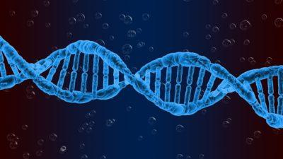 Ce trăsături genetice iau copiii de la mamă și care de la tată