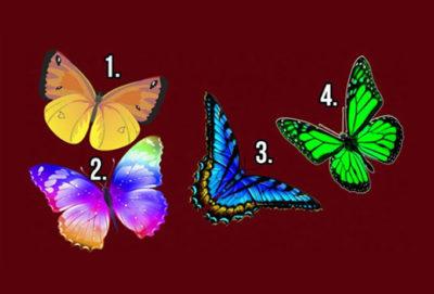 Alege fluturele care ți-a plăcut cel mai mult și află secretele sufletului tău